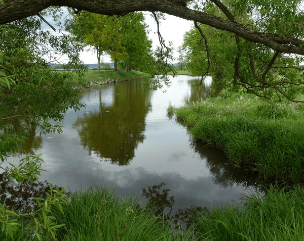 Altwasser 1 - Fischen und Angeln landkreis Cham