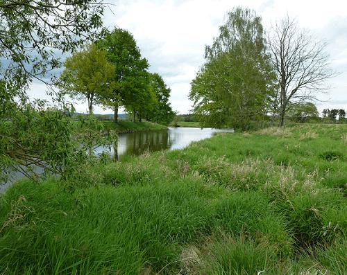 Altwasser - Foto Anglerfreunde Untertraubenbach