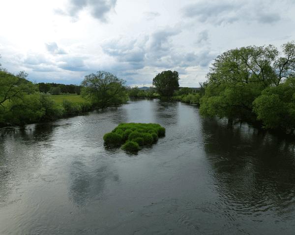 Angeln und Fischen am Regen 1