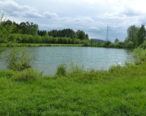 Bagger See Foto - Verein Fischerei Untertraubenbach