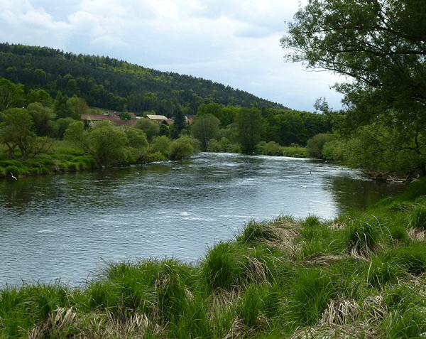 Foto vom Regen - Anglerfreunde Untertraubenbach