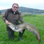 Waller mit 1,32m und 14430 gramm gefangen von Schambeck Hans am 08.10.2014 am Regen im Bereich Pösing mit Wobbler